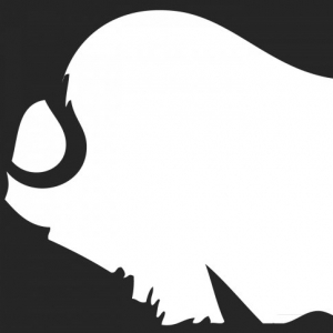 Muskox Records demo submission