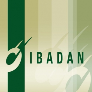 Ibadan Records demo submission