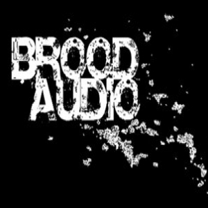 Brood Audio demo submission
