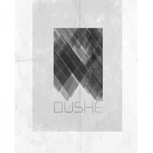 Dushe demo submission