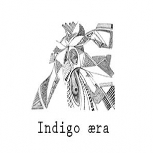 Indigo Aera demo submission