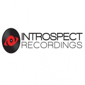 Introspect Recordings demo submission