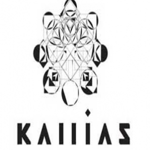 kallias recs demo submission