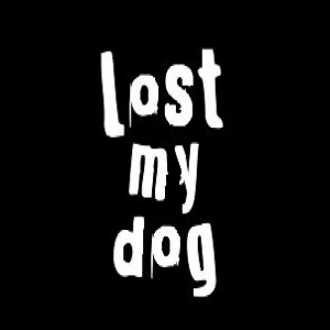 Lost My Dog demo submission