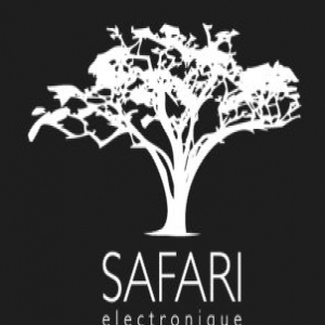 Safari Electronique demo submission