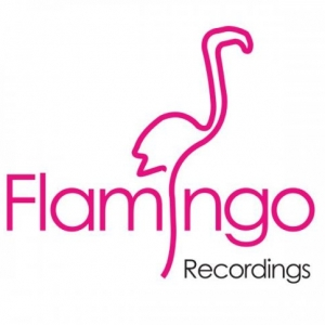 FLAMINGO RECORDINGS demo submission