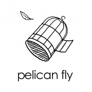 Pelican Fly demo submission
